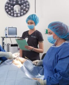 Link to surgery page